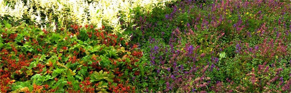 Een goede tuin begint met aarde van Van Dorresteijn